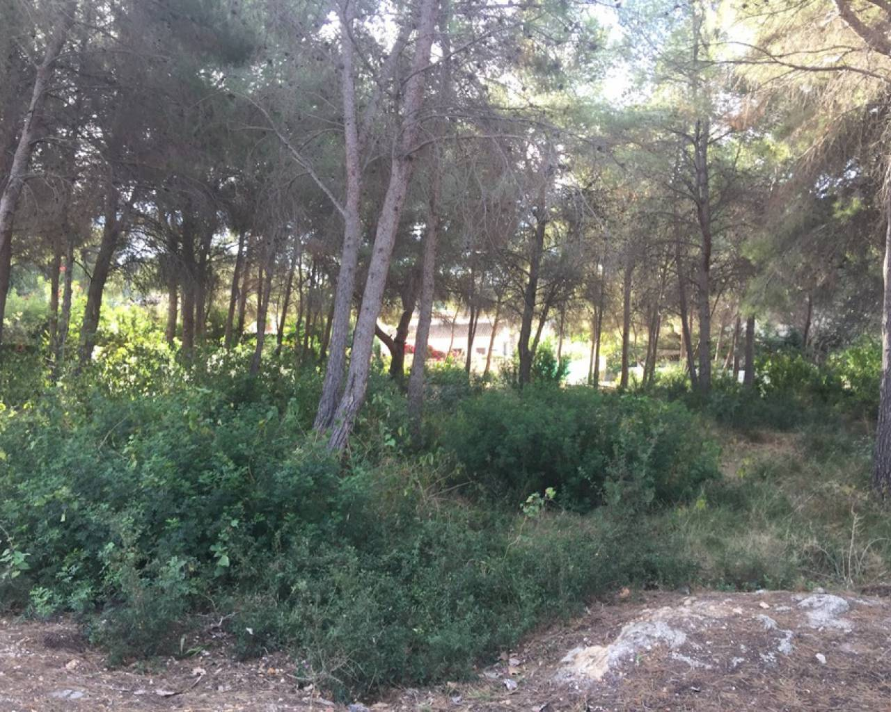 Sale - Plot of Land - Moraira - Pla de Mar