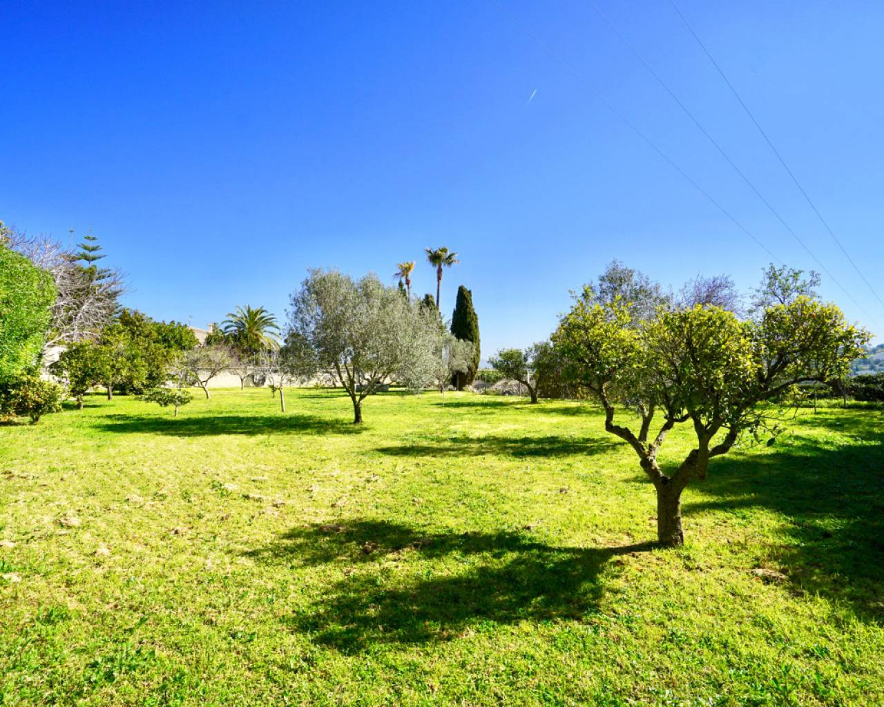 Sale - Country House / Finca - Teulada - Benimarco