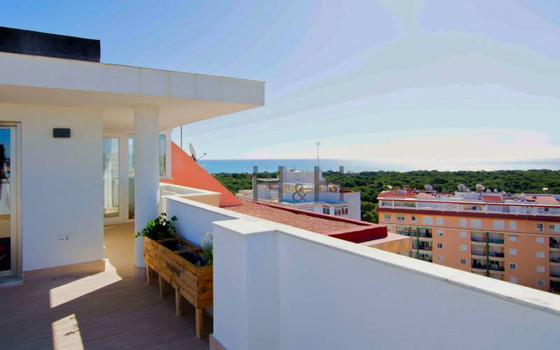 Penthouse - Sale - Guardamar del Segura - Central
